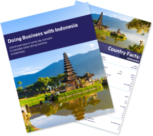 Doing Business with Indonesia Bundle